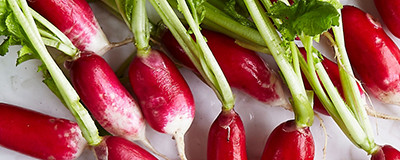 image of radishes