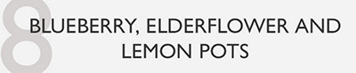 8. Blueberry, elderflower and lemon pots