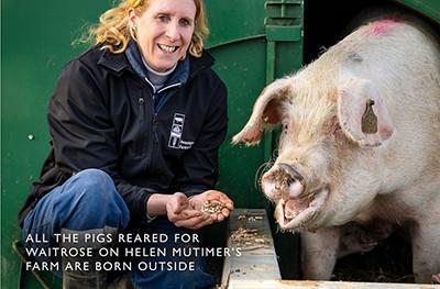 image of pig farmer