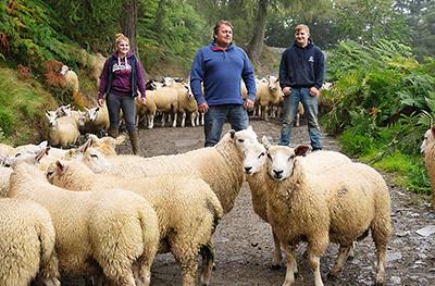 image of a sheep farmers