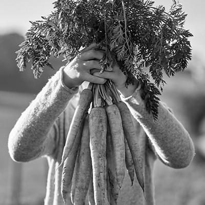 Farm to family carrots
