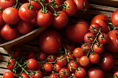 image of Duchy Organic tomatoes