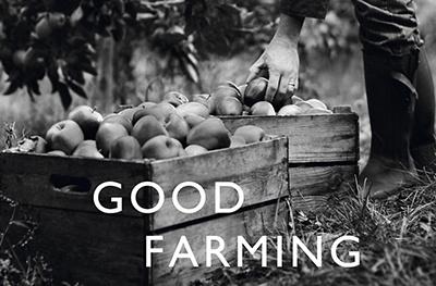 image of apple farming